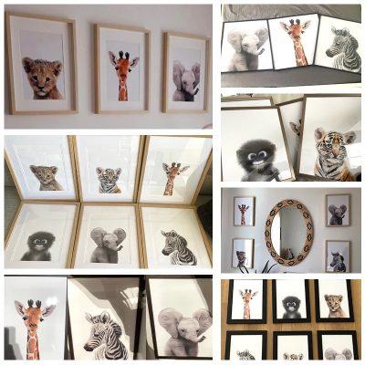 Affiches animaux de la jungle